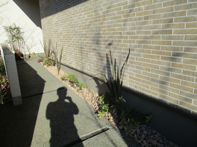 菊池監督の影